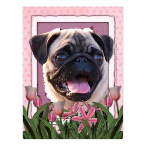 Mutter-Tag - rosa Tulpen - Mops Postkarte