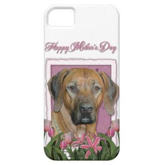 Mutter-Tag - rosa Tulpen - Rhodesian Ridgeback Etui Fürs iPhone 5