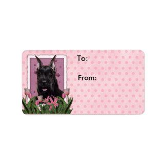 Mutter-Tag - rosa Tulpen - Schnauzer Adressaufkleber