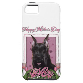 Mutter-Tag - rosa Tulpen - Schnauzer iPhone 5 Cover