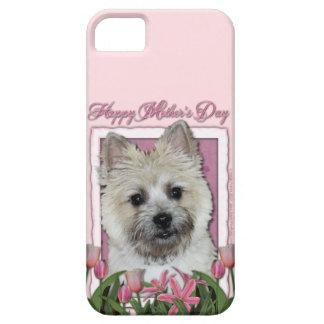 Mutter-Tag - rosa Tulpen - Steinhaufen - Teddybär iPhone 5 Case