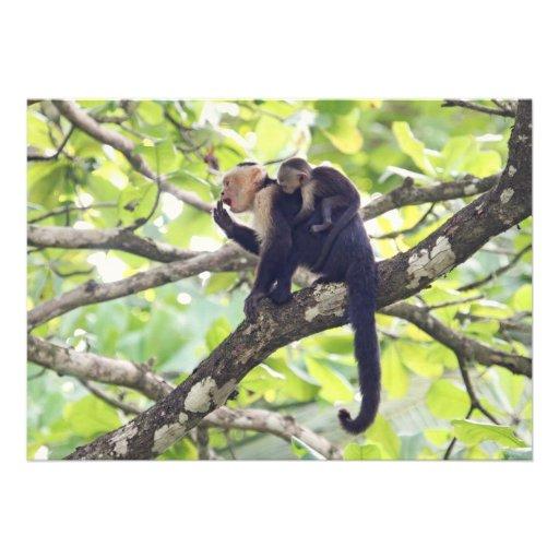 Mutter-und Baby-Affe Einladung
