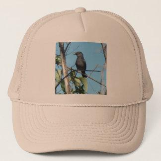 Muttercatbird-Versammlungs-Beeren zu ihr füttern Truckerkappe