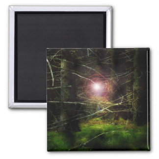 Mystical Forest Fridge Magnets