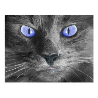 Mystische Katzen-Postkarte Postkarte