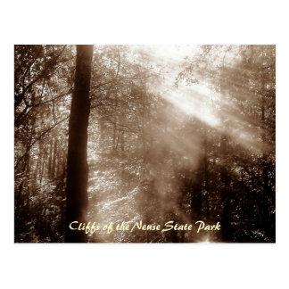 Mystischer Morgen CN4 - Postkarte