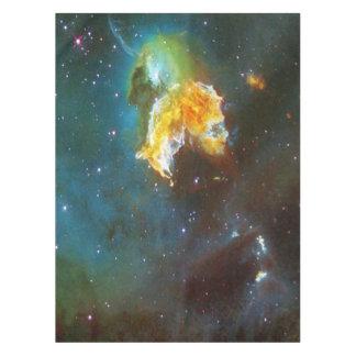 N63A Dame des nächtlichen Himmels Tischdecke