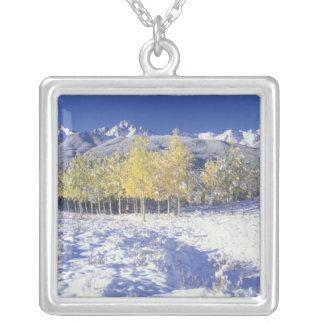 N.A., frischer Schnee USA, Colorado, San Juan Mts Versilberte Kette