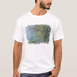 N.A., USA, Tennessee, Smokey Mts. Nationalpark, T-Shirt