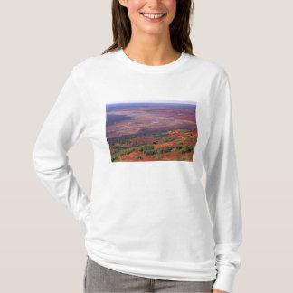 Na, USA, Alaska, Denali NP, Ansicht von McKinley T-Shirt