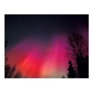 Na, USA, Alaska, Fairbanks, Vorhänge des Rosas und Postkarte
