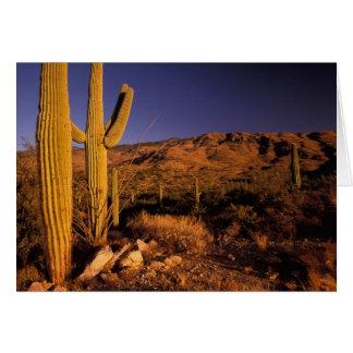 Na, USA, Arizona, Saguaro-nationales Monument, Karte