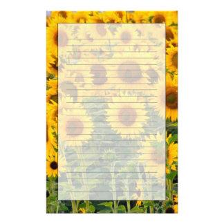 Na, USA, Colorado, Sonnenblumen Briefpapier