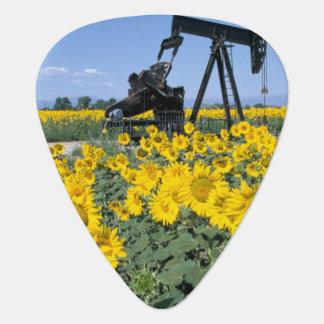 Na, USA, Colorado, Sonnenblumen, Öl-Derrickkran Plektrum