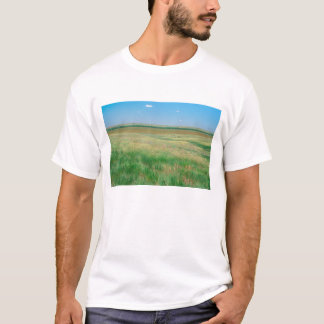 NA, USA, NE. Wiesen nähern sich Ogallala mit T-Shirt