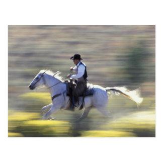 Na, USA, Oregon, Seneca, Ponderosa Ranch, Cowboy Postkarte