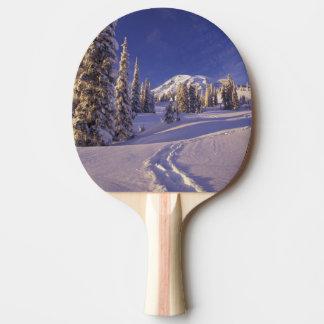 Na, USA, Washington, der Mount Rainier NP, Tischtennis Schläger