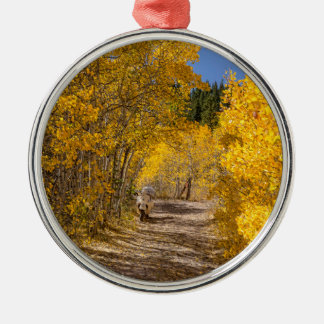 Nachmittags-Antrieb Silbernes Ornament
