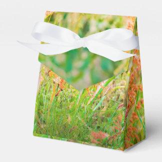 Nachmittags-Blumenszenen-Foto Geschenkschachtel