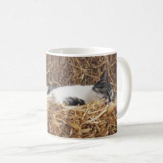 Nachmittags-Katzen-Nickerchen Kaffeetasse