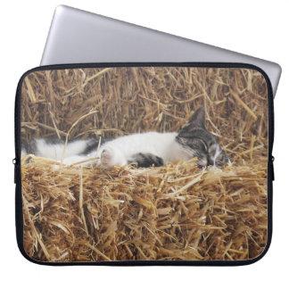 Nachmittags-Katzen-Nickerchen Laptop Sleeve