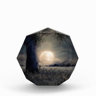 Nachtlandschaft Acryl Auszeichnung