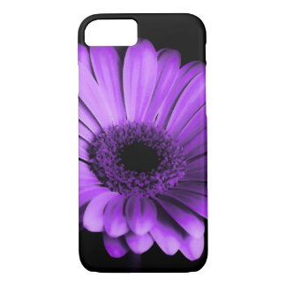 Nachtzeitlila Gerbera-Gänseblümchen iPhone Kasten iPhone 8/7 Hülle