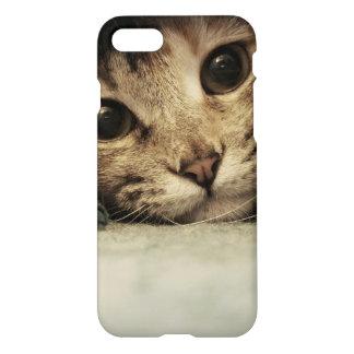 Nah oben von den Katzenaugen eines Tabby iPhone 8/7 Hülle