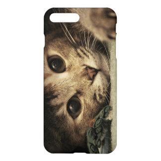 Nah oben von den Katzenaugen eines Tabby iPhone 8 Plus/7 Plus Hülle