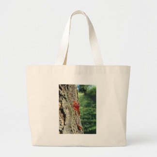 Nahaufnahme der Birnenbaumausscheidung des Jumbo Stoffbeutel