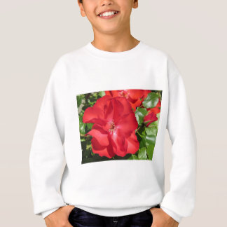 Nahaufnahme der Roter Rose Sweatshirt