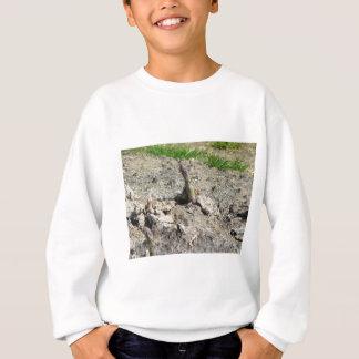 Nahaufnahme des jungen grünen Spargels Sweatshirt