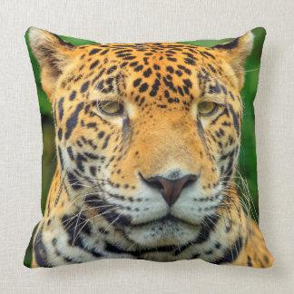 Nahaufnahme eines Jaguargesichtes, Belize Kissen