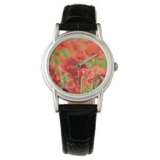 Nahaufnahme eines Mohnblumenfeldes, Frankreich Uhr