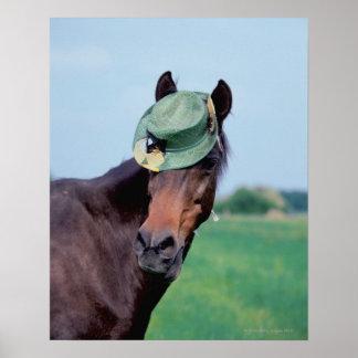 Nahaufnahme eines Pferds, das einen grünen Hut Poster
