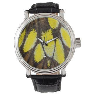 Nahaufnahme-Flügel-Muster des tropischen Uhr