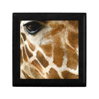Nahaufnahme-Giraffen-Gesichts-wilde Geschenkbox