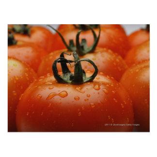 Nahaufnahme von Tomaten 2 Postkarte