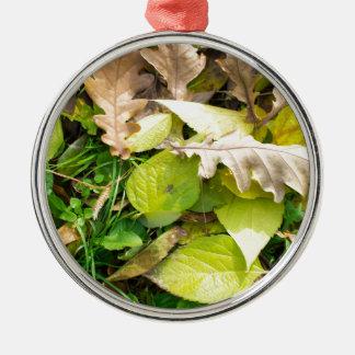 Nahaufnahmeansicht über gefallenes Herbst-Blätter Silbernes Ornament