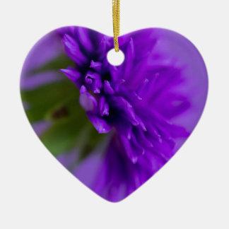 Nahaufnahmebild der Blume Aster auf lila backg Keramik Ornament