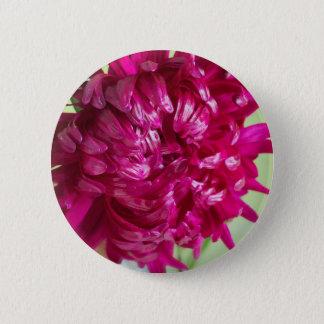 Nahaufnahmebild der Blume Aster Runder Button 5,7 Cm