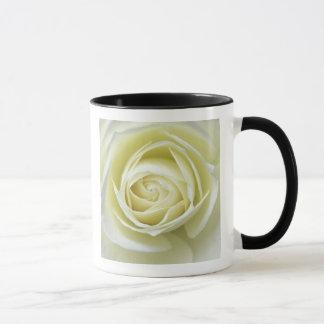 Nahe hohe Details der weißen Rose Tasse