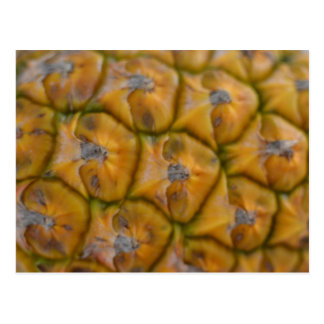 Nahe hohe Postkarte der Ananas