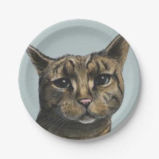 Nahes hohes Tabby-Katzen-realistisches Zeichnen Pappteller