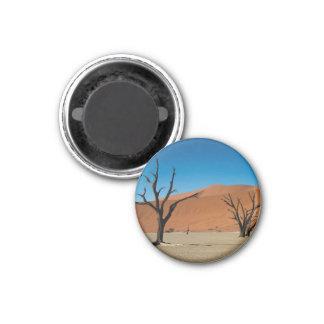Namibia - versteinerte Bäume an totem Vlei Runder Magnet 2,5 Cm
