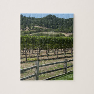 Napa- Valleyweinberg mit Zaun Puzzle