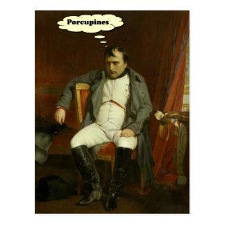 Napoleon denkt an Stachelschweine Postkarte