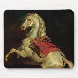 Napoleons Stallion Tamarlan Mauspad