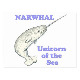 Narwhal Einhorn des Meeres Postkarte