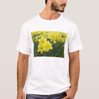 Narzissen Rf) T-Shirt